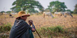 a-local-farmer-in-bagan