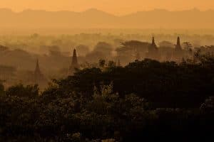 forest-and-pagodas-in-bagan