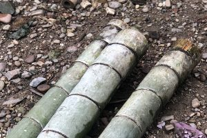 bamboo-branches-to-be-staked-together