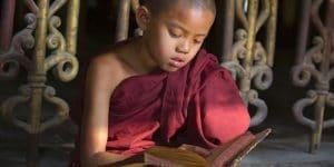 a-little-novice-reading-a-book
