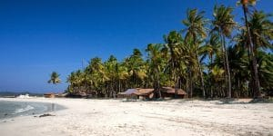 palm-tree-lined-beach-of-ngwe-saung