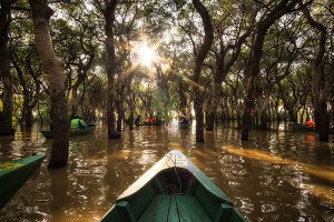 boating-in-ream-national-park